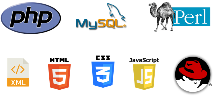 Searchlight Consulting Web Programming Languages